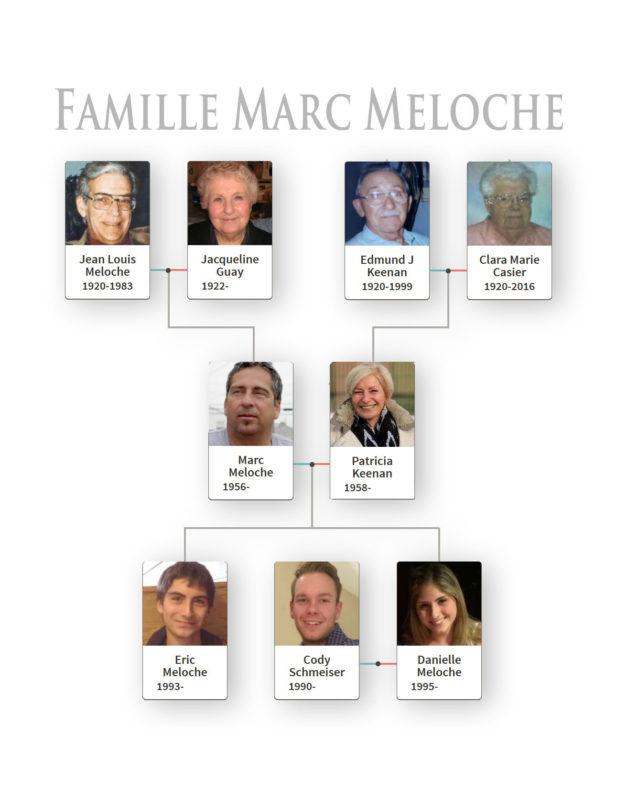 arbre-marc-meloche-2a